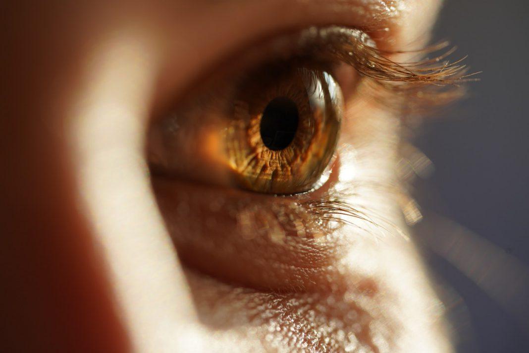 lens oog